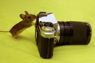 Wohl die kleinste Fotografin der Welt
