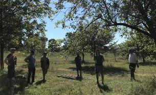 Die Helfer*Innen beim Obstbaumschnitt an der Flittarder Rheinaue