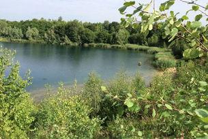 See in der Dellbrücker Heide